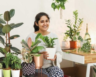 Best-Indoor-Plants-Every-Home-Must-Have