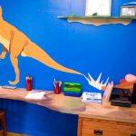 Dinosaurs Into Fun Decor