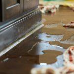 Handling Water Damage in Phoenix