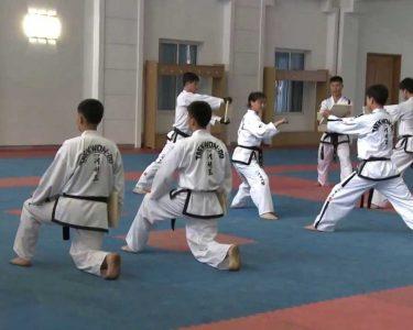 Practicing Taekwondo